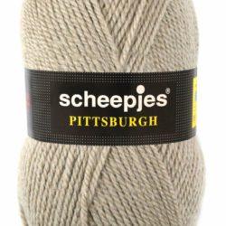Scheepjeswol Pittsburgh Kleur 9131