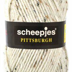 Scheepjeswol Pittsburgh Kleur 9161