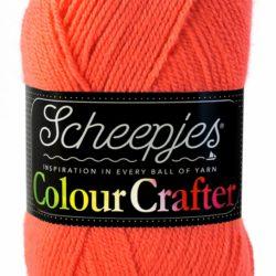 Scheepjes Colour Crafter Leek 1132